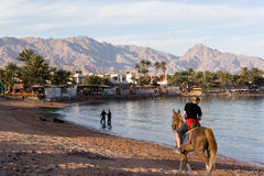 Horse Riding. Along beach with mountains ahead Royalty Free Stock Photo
