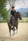 Horse riding Stock Image