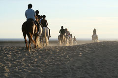 Horse riding. On the beach at sunset stock images