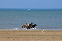 Horse riding at the beach. In Holland Royalty Free Stock Image