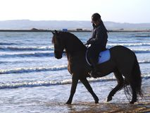 Horse Riding on the beach. Horse rider on Camber Beach, UK Stock Photo