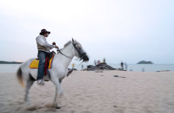 Horse riding at the beach Royalty Free Stock Photos