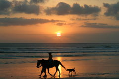 Horse riding on a beach at sunset. An idyllic scene of a person riding a horse as a dog and a friend walk alongside on a beatufiul beach. Silhouetted by the Stock Photo