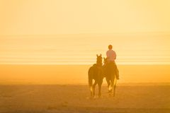 Horse riding on the beach at sunset. Royalty Free Stock Photos