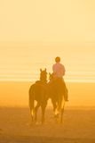 Horse riding on the beach at sunset. Royalty Free Stock Photography
