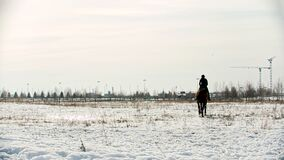 Horse riding - beautiful equestrian is galloping on a snowy field