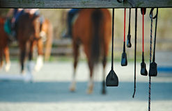 Horse riding crops stock image