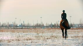 Horse riding - equestrian in black clothes galloping on a horse on a snow field