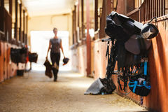 Horse riding equipment stock photography