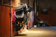Horse riding equipment. Is hanging on a door in a stable Royalty Free Stock Photos