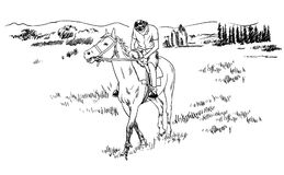 Horse riding in the fields sketch vector illustration, young guy rider resting on horseback. Isolated Stock Images