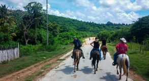 Horse riding. A group of people at horse riding in the field Royalty Free Stock Images