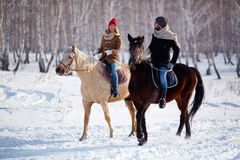 Horse riding. Happy couple horse riding in the forest Stock Images