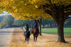 Horse riding at Hyde park, London Stock Image