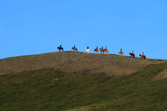 Horse Riding in Iceland. Line of horse riders near Myvatn Lake in Iceland Stock Photography