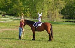 Horse-Riding Lesson Royalty Free Stock Photo