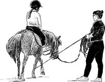 Horse riding lesson Stock Photography