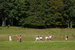 Horse riding lessons Royalty Free Stock Photos