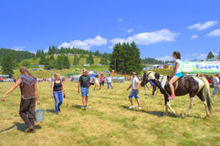 Horse riding lessons at Rozhen fair Stock Images