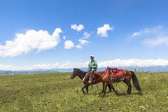 Horse Riding in Meadow of Xinjiang, China stock images