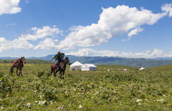Horse Riding in Meadow of Xinjiang, China royalty free stock photography