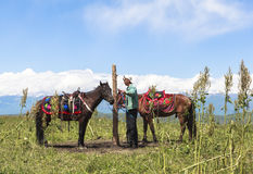Horse Riding in Meadow of Xinjiang, China royalty free stock image