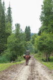 Horse Riding in Meadow of Xinjiang, China royalty free stock images