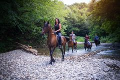 Horse riding. In nature near river royalty free stock photography