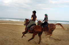 Horse Riding in Oman Royalty Free Stock Photos