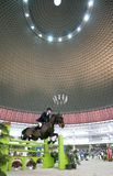 Horse riding race Stock Photography