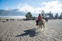 Horse riding. Service around Bromo walking from crater to the parking areas. Mt.Bromo is locate on Tengger Semeru National Park, East Java, Indonesia royalty free stock image