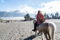 Horse riding. Service around Bromo walking from crater to the parking areas. Mt.Bromo is locate on Tengger Semeru National Park, East Java, Indonesia stock photography