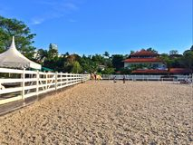 Horse riding in Singapore Royalty Free Stock Photos