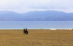 Horse Riding in Song kul Lake in Kyrgyzstan. This photo was taken in Song kul Lake in Kyrgyzstan. The Central Asian country of Kyrgyzstan offers many stock images