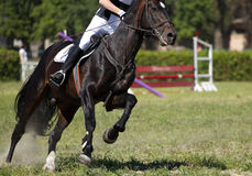 Horse riding sport. Horse jump a hurdle in competition Stock Photos