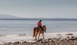 Horse riding. In Sweden at the lake Stock Images