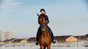 Horse riding - woman rider in black clothes galloping on a horse on a snow field