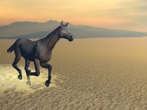 Freedom of the horse - 3D render Royalty Free Stock Image