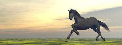 Freedom of the horse - 3D render Royalty Free Stock Photos