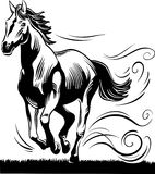 Horse running free Royalty Free Stock Photography