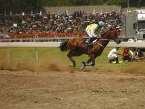 Horse Running with Jockey Racing. A jockey is riding on a horse in a horse race Royalty Free Stock Photography