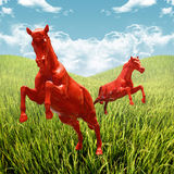 Horse running in rice field Royalty Free Stock Image