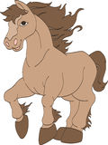 Horse Running Wild. A brown horse running happily Stock Photography