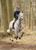 Horse running through woods. Daisy Berkeley riding Kiltubrid Rhapsody in the Land Rover Gatcombe one day event horse cross country trails 22-3-14 Royalty Free Stock Photo