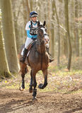 Horse running through woods. Dani Evans riding Corofin Flyer in the Land Rover Gatcombe one day event horse cross country trails 22-3-14 Royalty Free Stock Images
