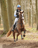 Horse running through woods. Dannie Morgan riding Quob Dynamic in the Land Rover Gatcombe one day event horse cross country trails 22-3-14 royalty free stock image
