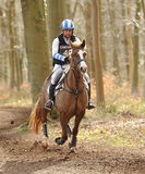 Horse running through woods. Dannie Morgan riding Quob Dynamic in the Land Rover Gatcombe one day event horse cross country trails 22-3-14 stock photography