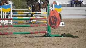 Horse runs and jumps through a barrier at sport competition. Close up of horse feet galloping. Professional jockey rides. On horseback. Slow motion stock video footage