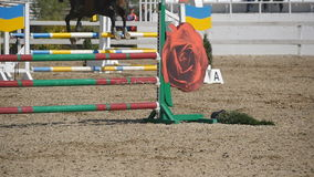 Horse runs and jumps through a barrier at sport competition. Close up of horse feet galloping. Professional jockey rides. On horseback. Slow motion stock video