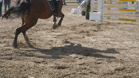 Horse runs and jumps through a barrier at sport competition. Close up of horse feet galloping. Professional jockey rides. On horseback. Slow motion stock footage